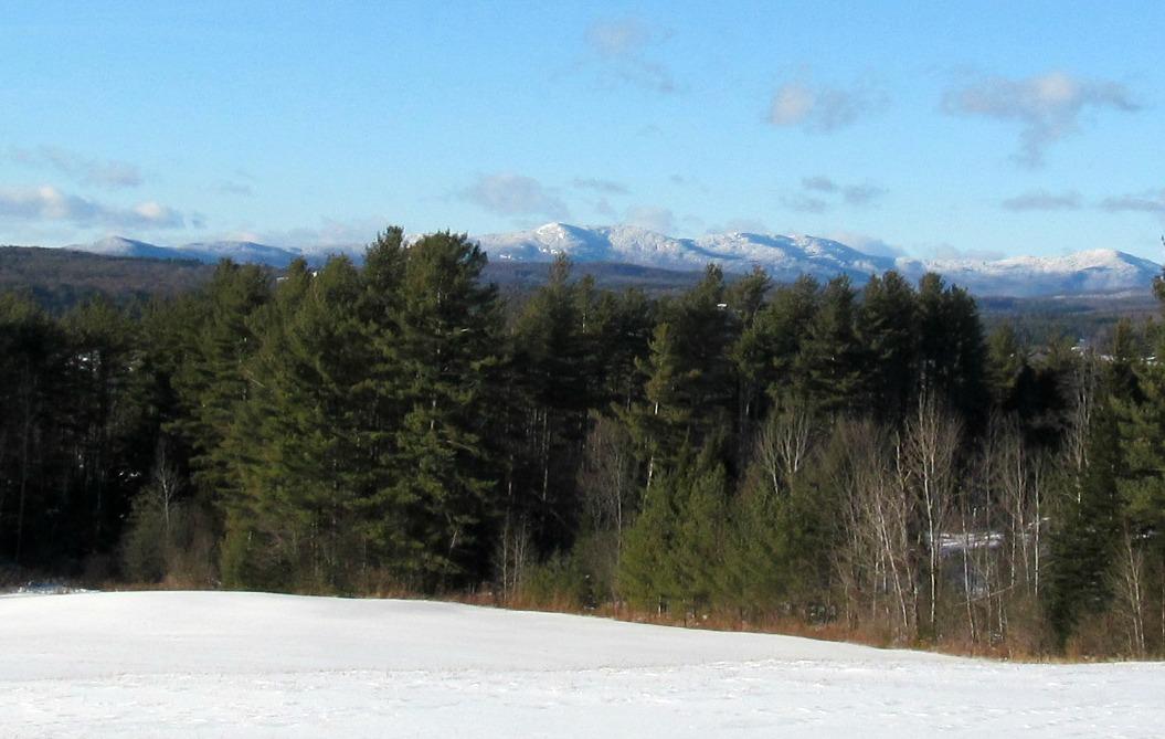 January 2015 Landscape